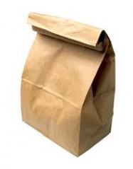 Brown Paper Lunch Bags 12/100 Case