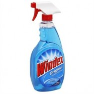 Windex Trigger 12/26oz Case